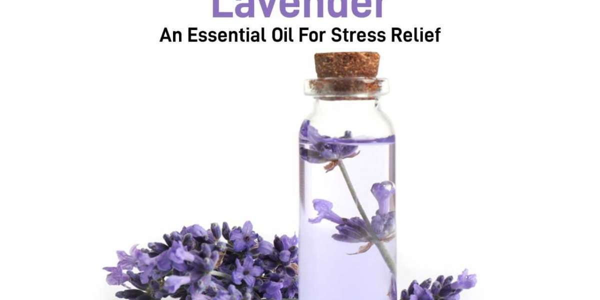 Lavender- An essential oil for stress relief